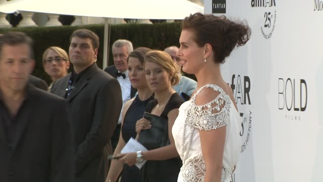 brooke shields kenneth cole at the amfar gala red carpet arrivals 64th cannes film festival at antibes - brooke shields stock videos and b-roll footage