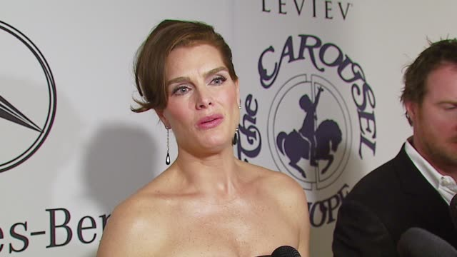 brooke shields on the event at the mercedesbenz presents the 17th carousel of hope ball at the beverly hilton in beverly hills california on october... - brooke shields stock videos and b-roll footage