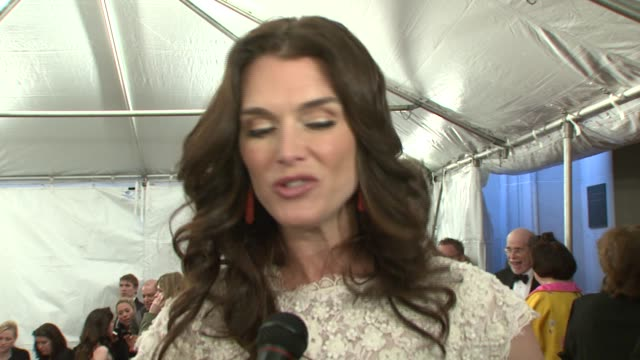 brooke shields on wearing oscar de la renta and on poiret's contributions to fashion at the metropolitan museum of art costume institute gala 'poiret... - brooke shields stock videos and b-roll footage