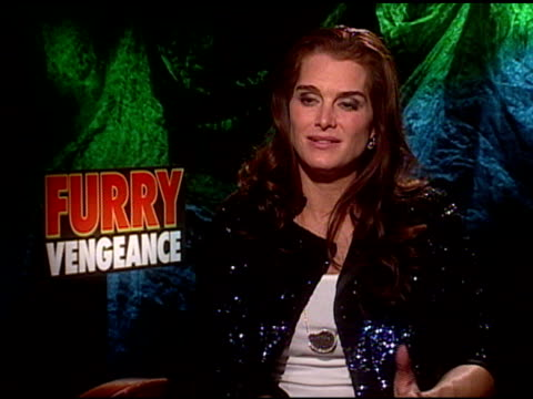 brooke shields on working with the cast at the 'furry vengeance' junket at los angeles ca. - ブルック シールズ点の映像素材/bロール
