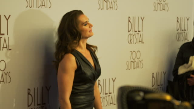 brooke shields posing for paparazzi on the red carpet at the imperial theater - ブルック シールズ点の映像素材/bロール