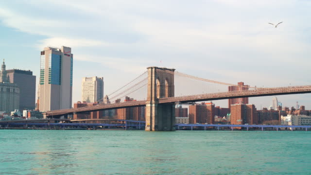 brooklyn bridge in new york city, united states - brooklyn bridge stock videos & royalty-free footage