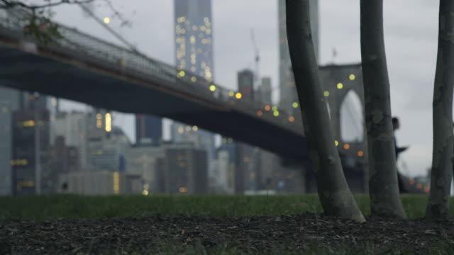 brooklyn bridge park fun - 少於10秒 個影片檔及 b 捲影像