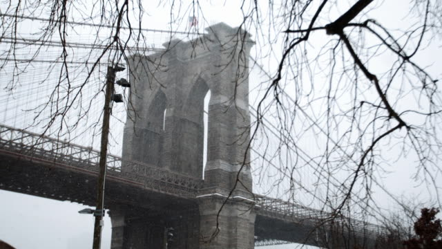 Brooklyn Snowstorm