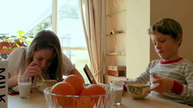 a brother and a sister having their breakfast together, morning - carton stock videos & royalty-free footage