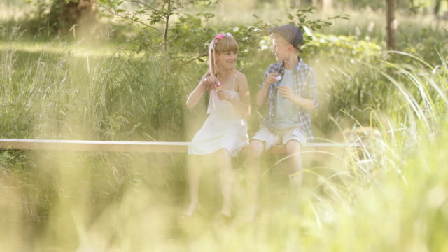 """SLO MO Schwester und Bruder sitzt in der Natur blowing bubbles """""""