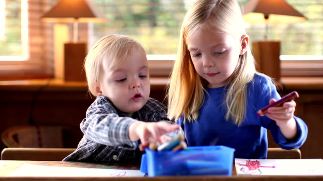 ms brother (12-23 months) and sister (4-5) drawing sitting at table / brussels, brabant, belgium - 12 23 mesi video stock e b–roll