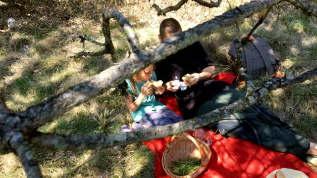兄と妹の自然でピクニック - ピクニック点の映像素材/bロール