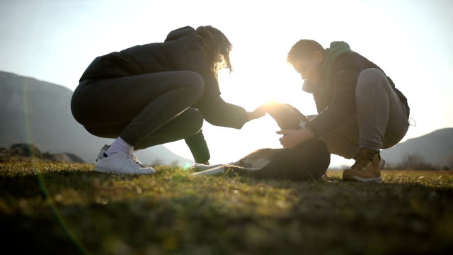brother and sister in the sunset stroking  stray dog in field - pampered dog stock videos and b-roll footage
