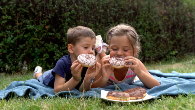 brother and sister, picnic time - picnic stock videos & royalty-free footage