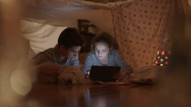 vídeos de stock e filmes b-roll de brother and sister play on tablet while inside a pillow fort. - equipamento