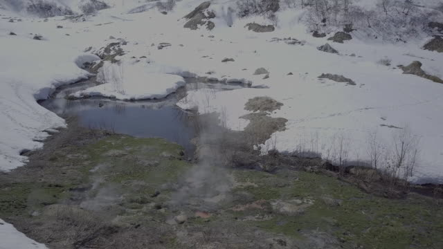 brown bear in geyser valley, kamchatka, russia - hot spring stock videos & royalty-free footage