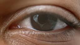 ECU Brown colored iris of a human eye