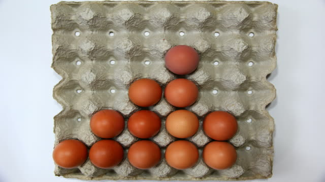 brown eggs - tray stock videos & royalty-free footage