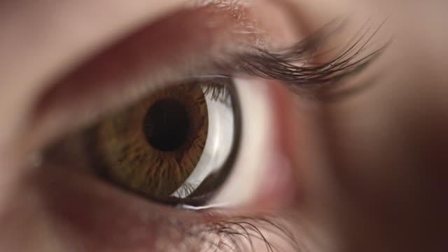 4K - Brown Eye