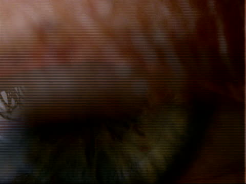 bcu brown eye with dilated pupil, pupil contracts, eyelid closes - eyelid stock videos and b-roll footage