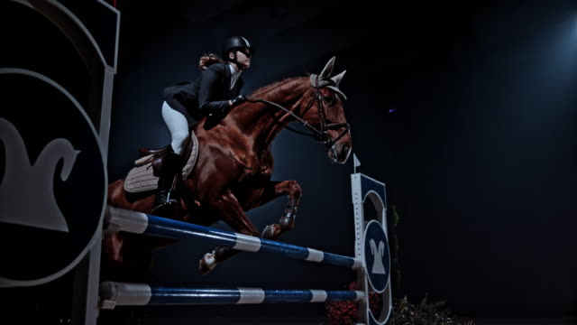 SLO MO Brown horse and his rider jumping a rail in the arena