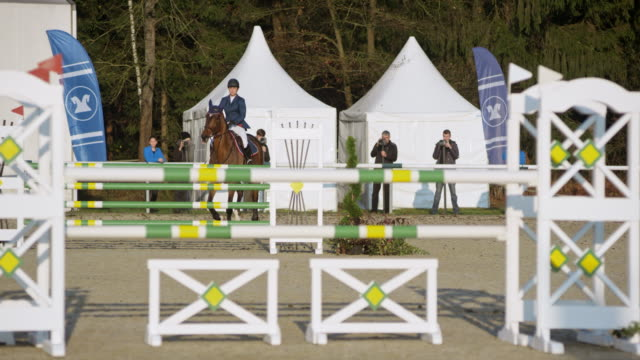 Brown horse and his rider jumping over the hurdles in sunshine
