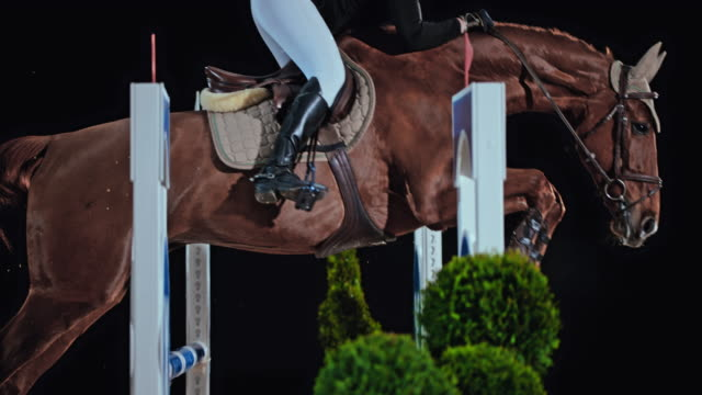 slo mo brown horse with a female rider jumping the oxer - bridle stock videos & royalty-free footage