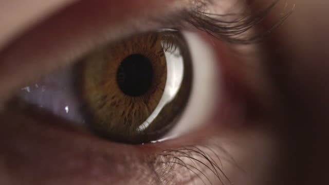 4k - brown human eye - blinking stock videos & royalty-free footage