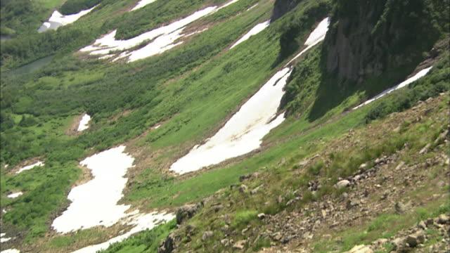 brown-bearss daisetsuzan volcanic group hokkaid_ - くま点の映像素材/bロール