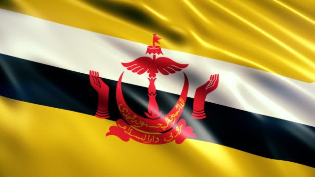 brunei flag - brunei stock videos & royalty-free footage