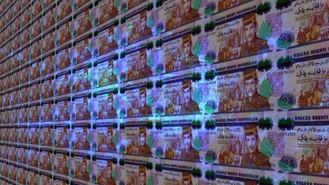 bruneian dollar notes - brunei stock videos & royalty-free footage