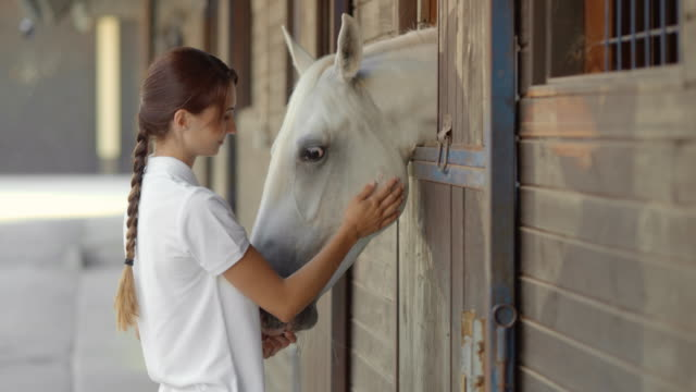 SLO MO DS Brunette female feeding a white horse in the stable