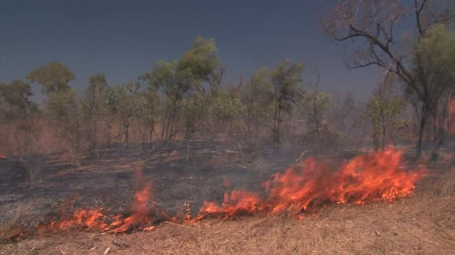 brush fire - northern territory australia stock videos & royalty-free footage