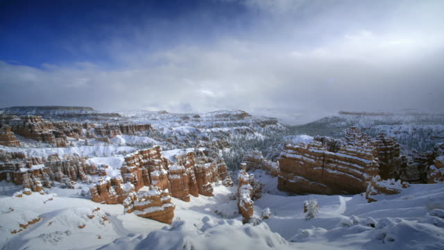 bryce canyon national park after winter storm - bryce canyon bildbanksvideor och videomaterial från bakom kulisserna
