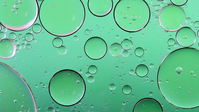 blase-hintergrund-farbe grün-frische - formen stock-videos und b-roll-filmmaterial
