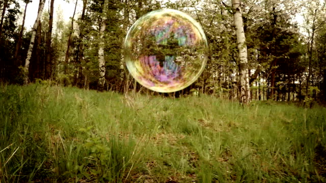 bubbles in the forest. - soap sud stock videos & royalty-free footage