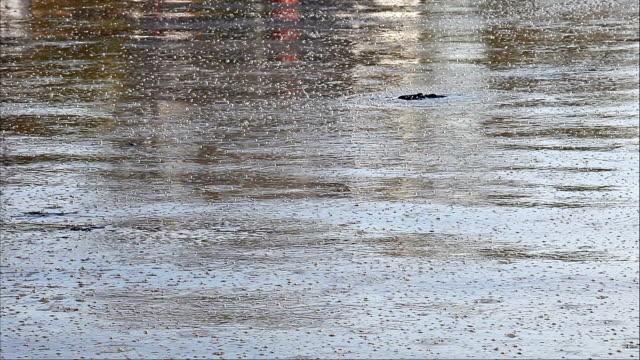 vídeos y material grabado en eventos de stock de hd: burbujas en el agua de mar contaminados aumento - charca