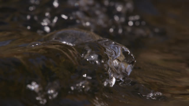 bubbling water current on surface of stream, cumbria, england - stream stock videos & royalty-free footage