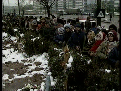 bucharest after the revolution; snow romania: bucharest seq people digging graves in icy ground as building new cemetery to bury dead of revolution... - romania点の映像素材/bロール