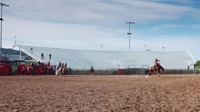 bucking bronco practice in rodeo stadium - bucking stock videos & royalty-free footage