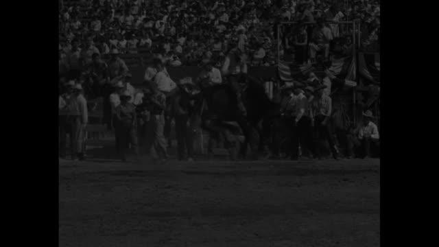 ms bucking bronco rider / vs cowboys parade into los angeles memorial coliseum / cu spectators / vs bucking bronco riders / ms spectators in stands /... - bucking stock videos & royalty-free footage