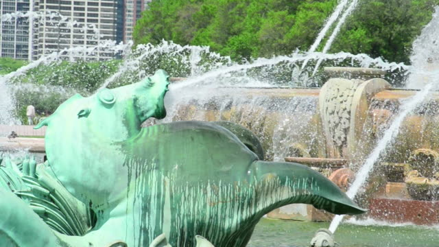 buckingham fountain chicago - buckingham fountain stock videos & royalty-free footage