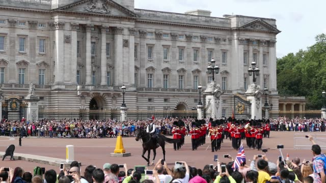 buckingham palace guards - horse family stock videos & royalty-free footage
