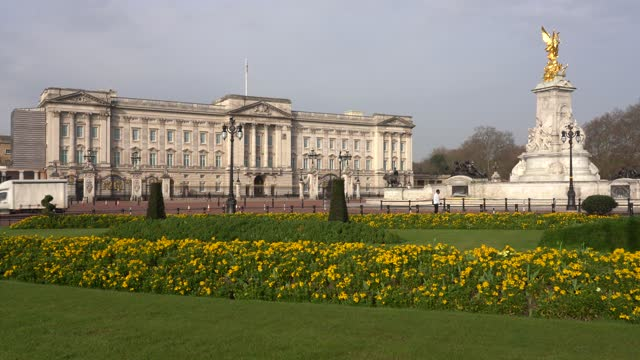 buckingham palace, london, england - queen royal person stock videos & royalty-free footage