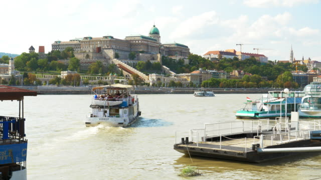 budapest danube river and royal palace of buda - royal palace of buda stock videos & royalty-free footage