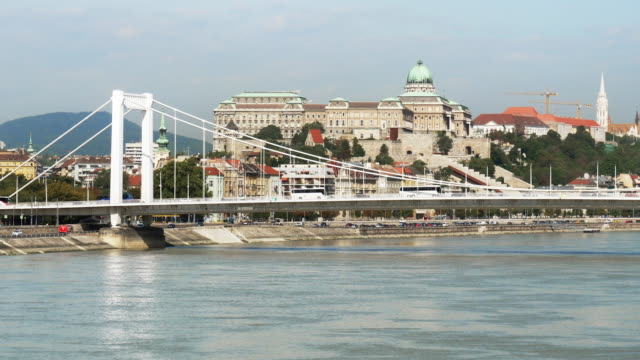 budapest elisabeth bridge and buda castle hill - royal palace of buda stock videos & royalty-free footage