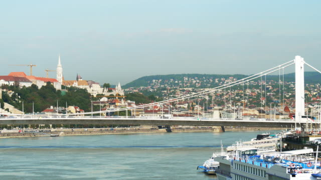 budapest elisabeth bridge and buda castle hill - castle hill budapest stock videos and b-roll footage