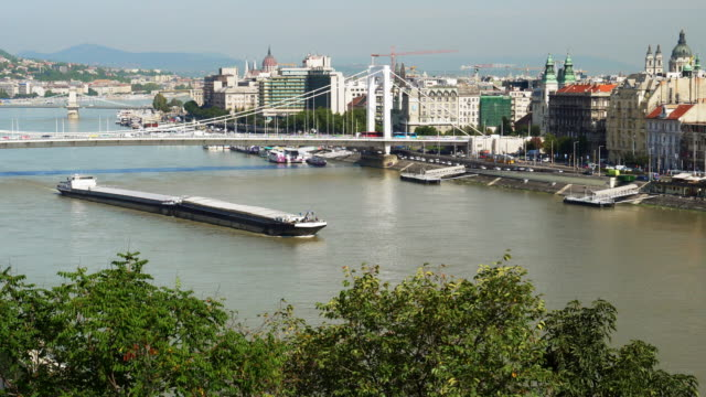 budapest skyline with elisabeth bridge - river danube video stock e b–roll