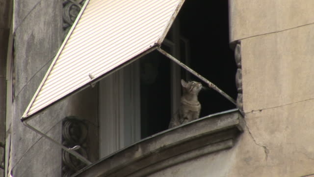 vidéos et rushes de budapestclose view of a window in budapest hungary - culture hongroise