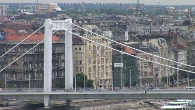 stockvideo's en b-roll-footage met budapestelizabeth bridge in budapest hungary - traditionally hungarian