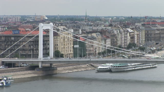 stockvideo's en b-roll-footage met budapesttop view of elizabeth bridge over danube river in budapest hungary - traditionally hungarian