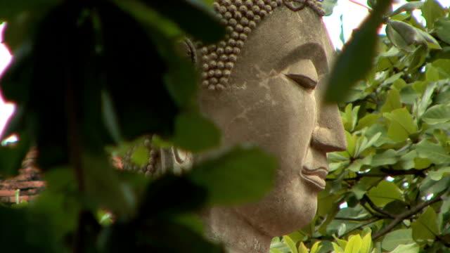 cu zo ws buddha head at wat ratcha buranain, ayutthaya, thailand - アユタヤ県点の映像素材/bロール