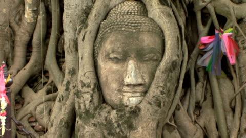 vídeos de stock, filmes e b-roll de cu zo ws buddha head overgrown in fig tree in wat mahatat park, ayutthaya, thailand - embaraçado