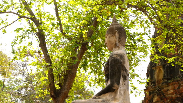 Buddha image Statues in Ayutthaya, Thailand
